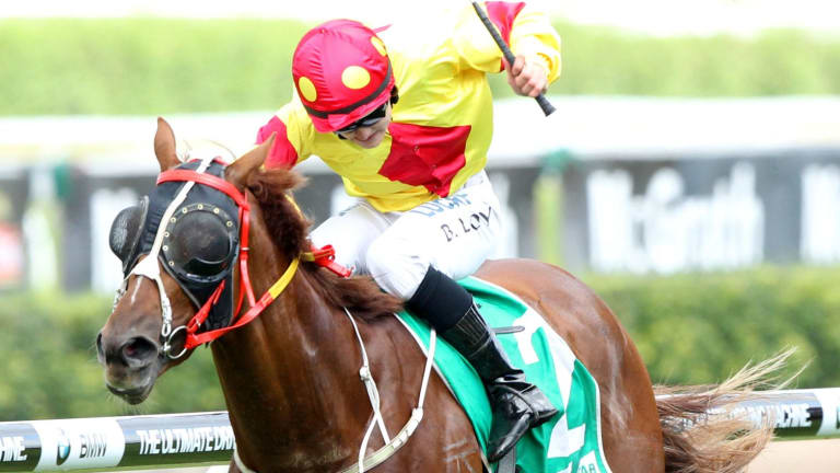 The Paul Jones-trained Mercurial Lad will run in a strong Canberra Cup.