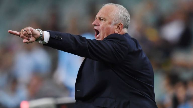 Urgent: Graham Arnold issues instructions from the sideline.