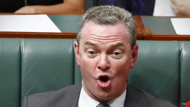 Defence Industry Minister Christopher Pyne during question time on Thursday.