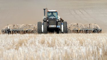 The fate of wheat prices can have an effect on geopolitical tensions.