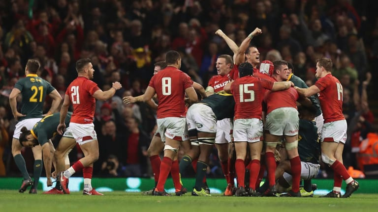 Final fling: The Wales players celebrate victory over South Africa on the final whistle.