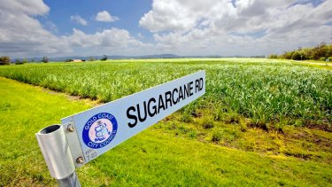 Australia's sizeable sugar industry has been joining forces to resist a 'sugar tax'.