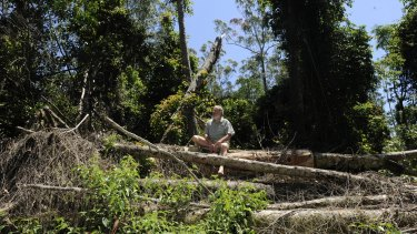 Dailan Pugh sits in an area of potentially illegal logging in the Cherry Tree State Forest that the EPA decided not to prosecute.