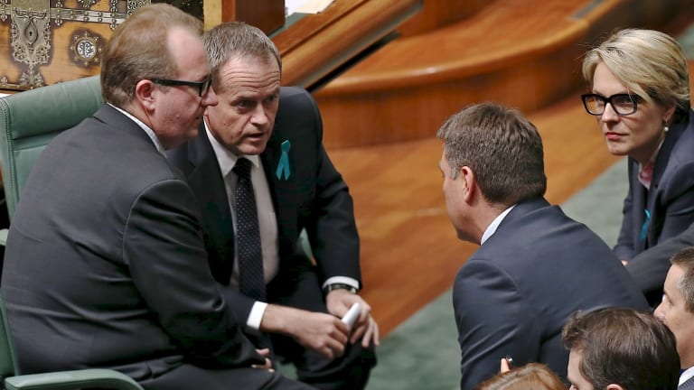 David Feeney, a close ally of Opposition Leader Bill Shorten, could be dumped by Labor if a byelection is needed.