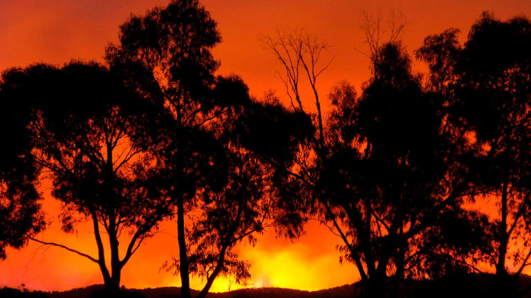 A bushfire near Healesville, on the outskirts of Melbourne on Black Saturday in February 2009.