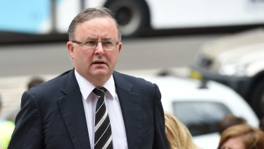 Anthony Albanese lost the federal leadership vote to Bill Shorten.