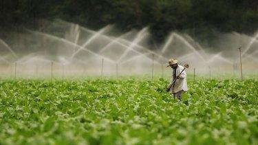 Tobacco farms in Australia where made illegal in 2006.