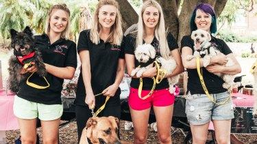 Little Legs Dog and Cat Rescue hosts Brisbane's first puppy picnic on Saturday, November 19, 2016. Pictured is Lauren O'Sullivan, Sam Ashton, Mykeala Campanini and Misti McClane.