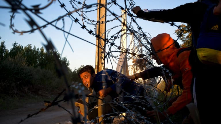One of the photographs in the Walkley-winning series Refugee Crisis in the Balkans.
