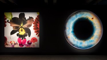 Left: In the Night Garden: Hale-Bopp, 2012, by Marc Quinn. Right: We Share Our Chemistry with the Stars, 2009, by Marc Quinn.