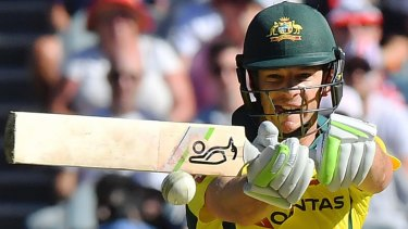 Solid outing: Tim Paine takes on a short ball.