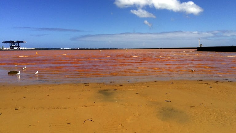 Very Poor: Foreshores Beach at Port Botany, where the water turned bright orange last year.