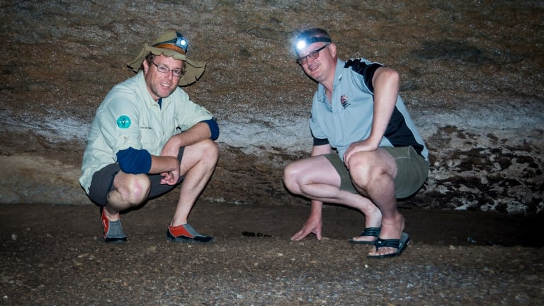 Tim and Bruce Ronning inspect droppings deep in a cave at Lake Burrinjuck.
