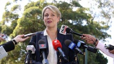 Push to make Labor MPs vote on same-sex marriage: Acting Labor leader Tanya Plibersek.