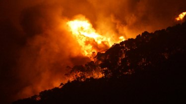 CFA firefighters had to face the full force of the Christmas Day fire at Wye River.