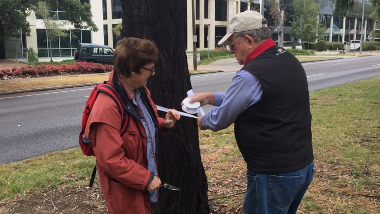 CanTheTram protesters Dr Jenny Stewart and Max Flint put white ribbon around Northbourne Avenue trees slated to be remove to make way for light rail.