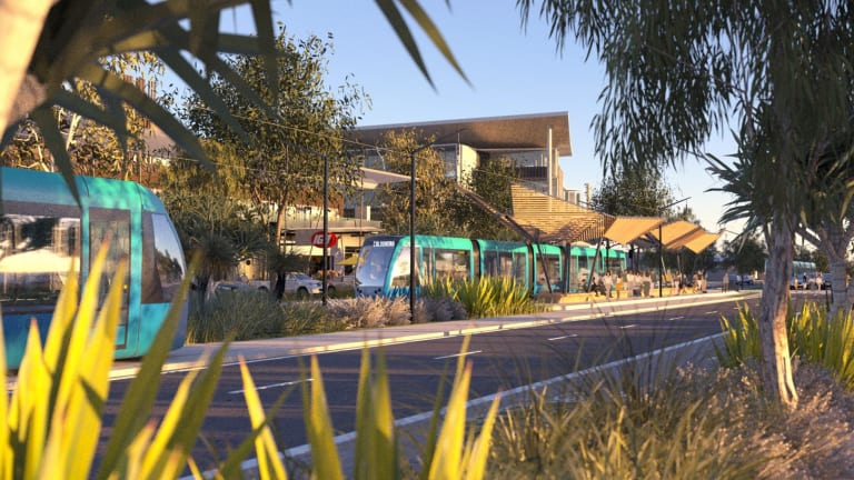 An artist's impression of the proposed Sunshine Coast light rail project.