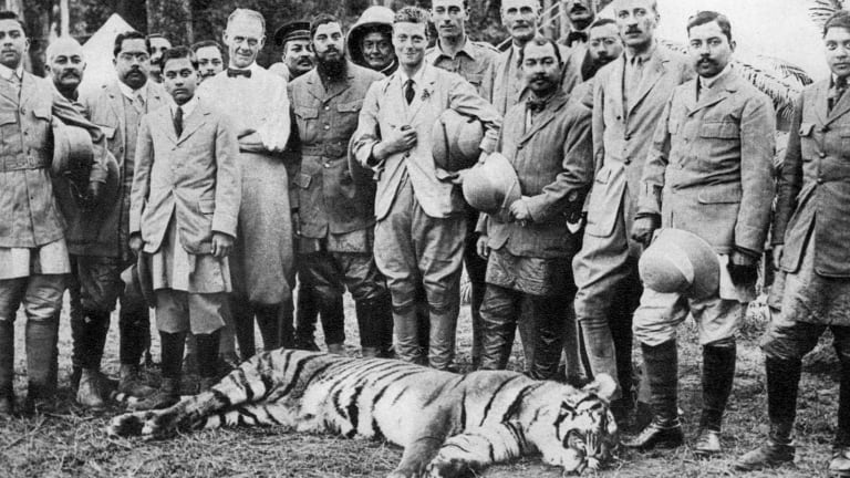 The Prince of Wales tiger shooting in Nepal during the Indian tour of 1921.