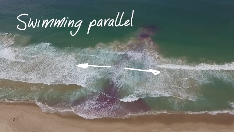 An image from the Jason Markland documentary on rip currents shows the approach of swimming parallel to the shore.