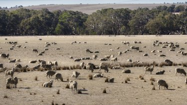Droughts are likely to get worse as the climate changes,  climate scientists say.