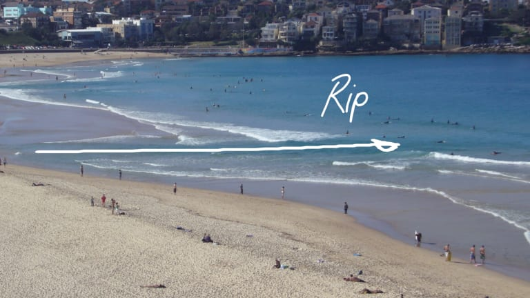 An image from the Jason Markland documentary on rip currents shows how to identify a rip.