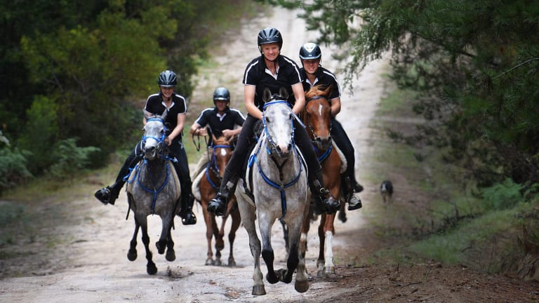 The Verspaandonk family train five days a week to prepare for Endurance riding events.