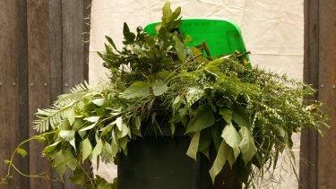 More than 8000 homes in Weston Creek and Kambah now have a green bin with Tuggeranong residents the next to receive them.