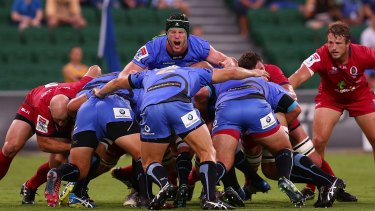 Legal writ: The Western Force are taking their fight for survival to the courts.