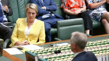 Labor's Tanya Plibersek in Parliament.