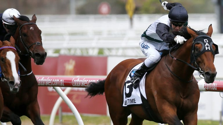 Long way home: Boom Time spears through the fence to win the Caulfield Cup.