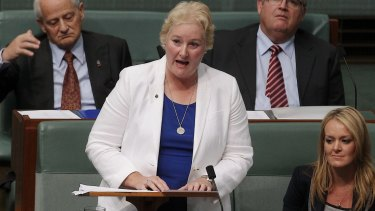 Young Liberals on the NSW south coast have urged Liberal MP Ann Sudmalis to rethink her attitude to same-sex marriage.
