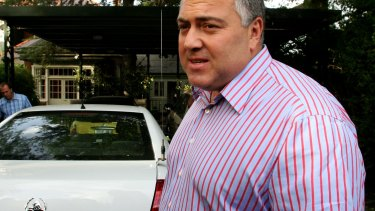 Joe Hockey argued the release of his hire car details could put him at risk.