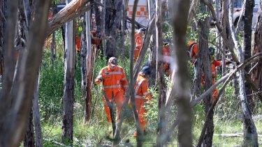 SES volunteers search the bushland where Karen Ristevski's body was found.