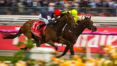 Contenders: Almandin and Heartbreak City charge neck and neck to the finish in last year's Melbourne Cup.
