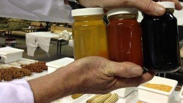 Samples of honey from Australian leptospermum, or manuka, bushes being tested.