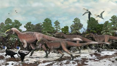 The nine-metre-long Yutyrannus, were covered in downy feathers, suggesting the T. rex may well have been feathered itself.
