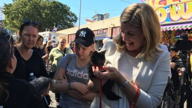 Prevention of Domestic and Family Violence Minister Shannon Fentiman and RSPCA kitten Figaro after the funding announcement at the Ekka on Tuesday.