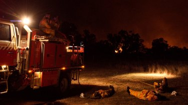 NSW RFS crew members from Cumberland Strike Team take a well earned rest after a long day of fighting a large grass fire burning towards the small township of Wollar in the greater Hunter region.