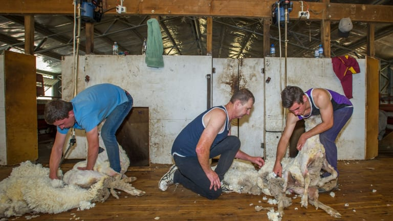 Ian Elkins (centre) shows student Nick Stephens of Farrer (right) and Kyle Ray of Missouri USA (left) the ropes.
