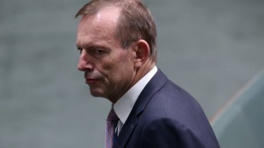 Tony Abbott is  increasingly being compared to Kevin Rudd,