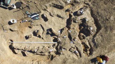 Significant dinosaur remains were found north-east of Winton in 2015. Excavations will resume in mid-August 2017.