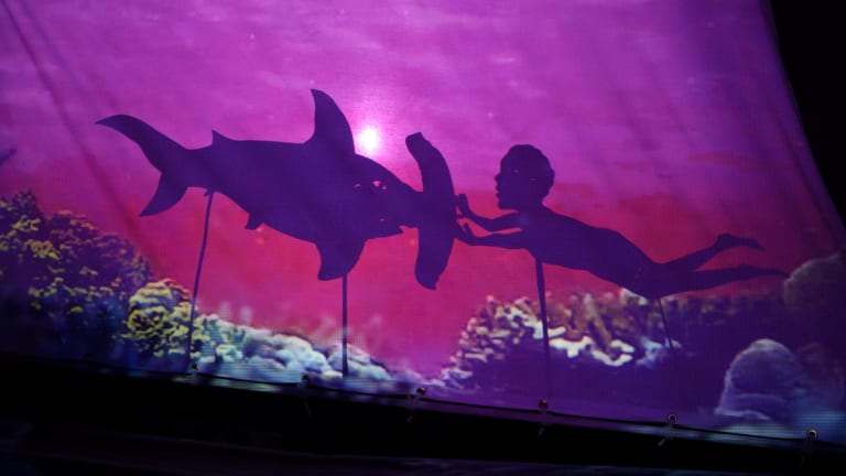 The play has a narrator and his offsider is a shadow puppeteer, making the journey easier for the audience to access.