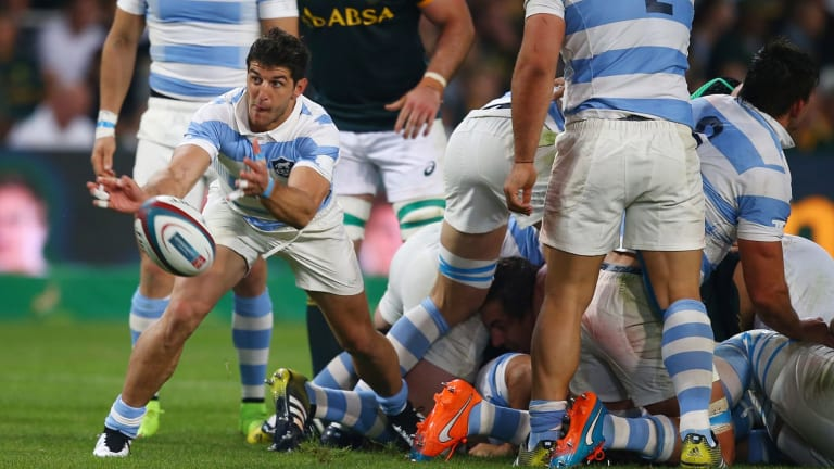 Argentina scrumhalf Tomas Cubelli has agreed terms on a two-year deal with the Brumbies.