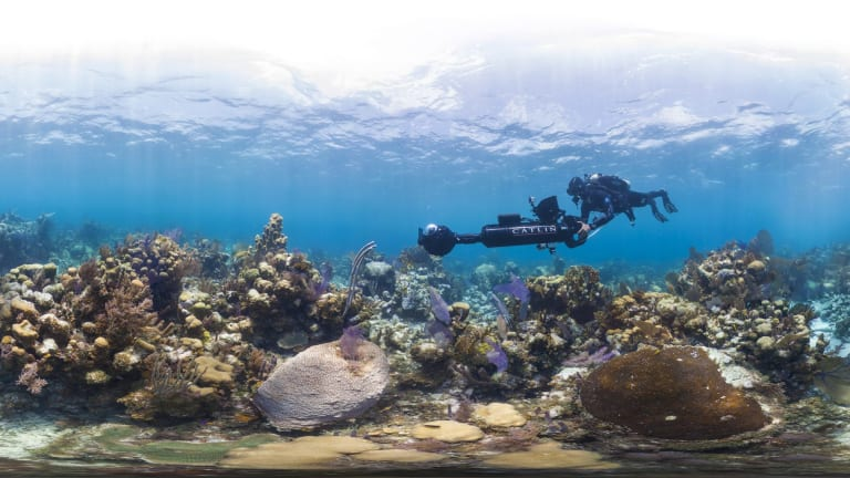 Glovers Reef in Belize.