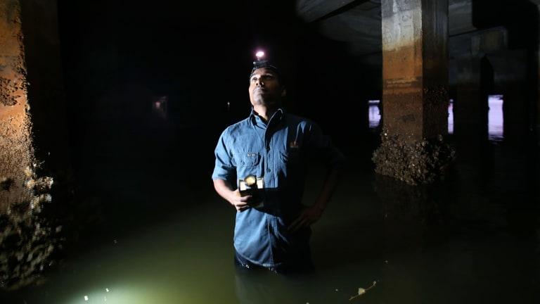 Dr Leroy Gonsalves hunts for endangered fishing bats.