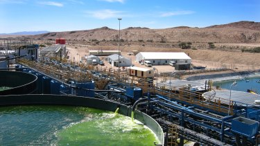 Paladin Energy's Langer Heinrich processing plant in Namibia. Plant availability and utilisation affected production.
