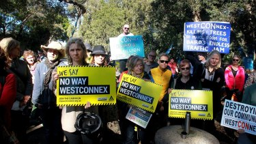 Crowds gathered at Sydney Park last week to try to protect paper barks and eucalypts.