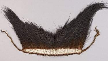 Part of Kebisu's headdress, collected in the Torres Strait from Maino by Alfred Cort Haddon in 1888.