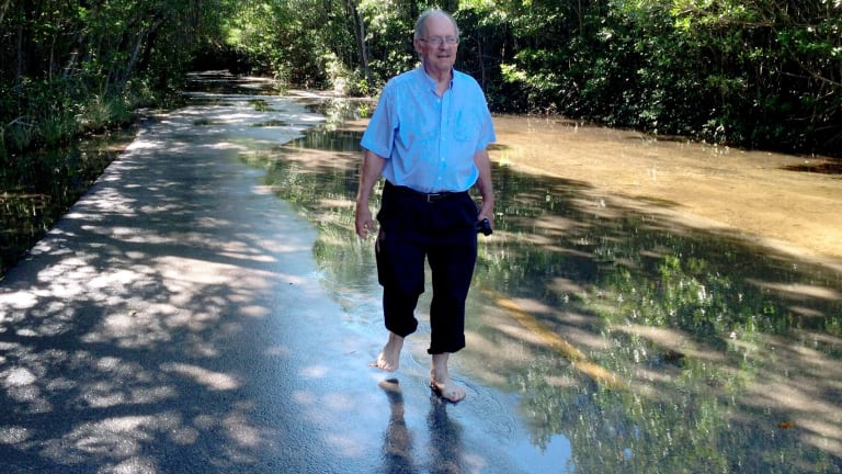 Rising concern: Geologist Harold Wanless takes a stroll through flooded Miami streets.