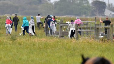 Potential illegal labourers try to escape a police and immigration raid on the Vizzarri asparagus farm at Koo Wee Rup, Victoria.